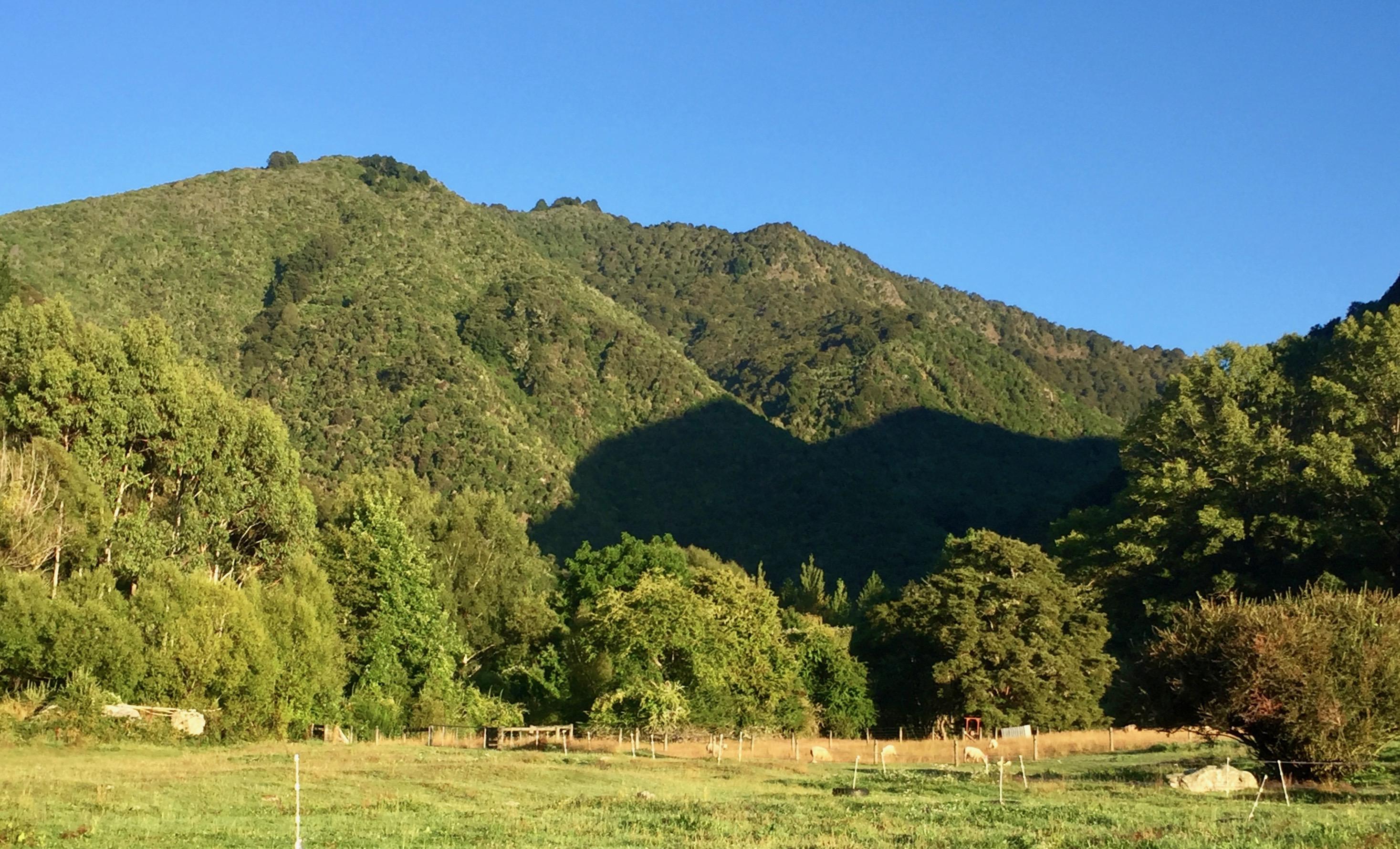 Native hills