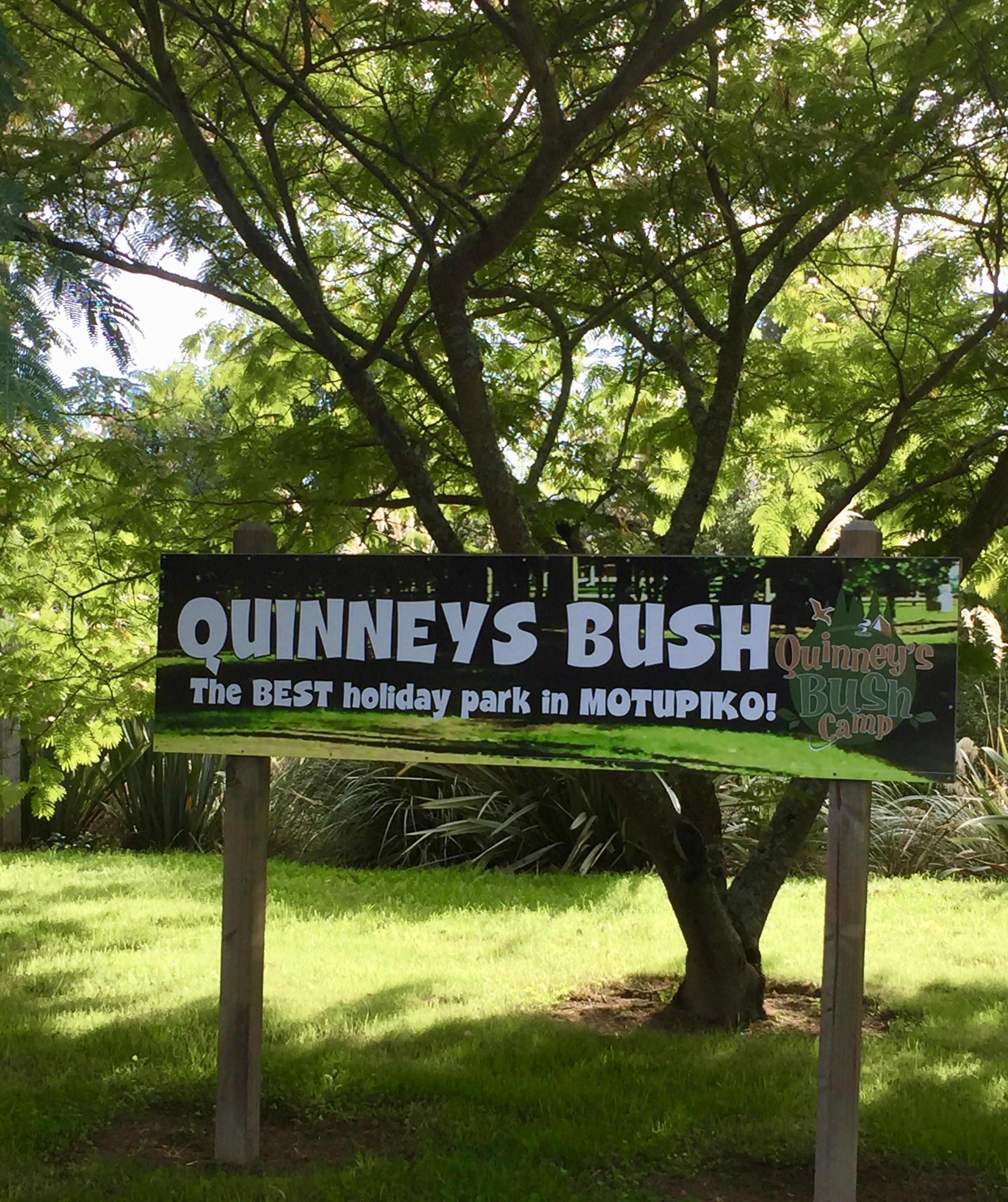Quinney's Bush Camp