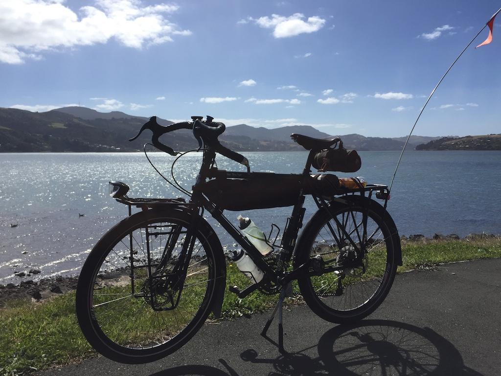 Trucker by Otago Bay